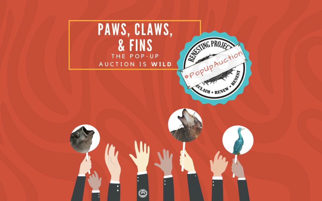 Paws, Claws, & Fins!
